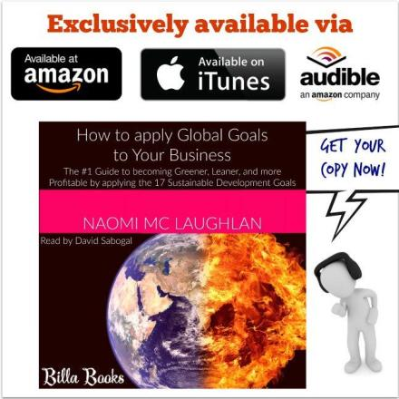 How to apply Global goals to Your Business by Naomi Mc Laughlan Advert